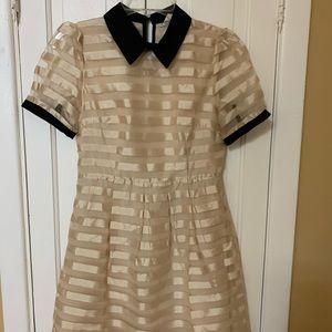 Dresses & Skirts - Tan And Black Dress